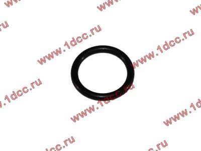Кольцо уплотнительное форсунки резиновое H2/H3 HOWO (ХОВО) VG609070080 фото 1 Орск