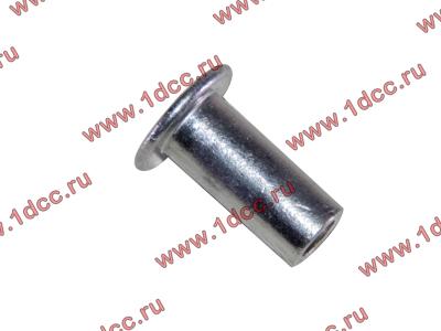 Заклепка алюминиевая 10х24 H2/H3 HOWO (ХОВО) 189000340068 AL фото 1 Орск