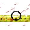 Кольцо уплотнительное форсунки резиновое H2/H3 HOWO (ХОВО) VG609070080 фото 2 Орск