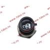 Датчик давления масла H3 HOWO (ХОВО) VG1540090035/1 фото 2 Орск