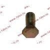 Болт пустотелый М12х1,25 (штуцер топливный) H HOWO (ХОВО) 90003962607 фото 3 Орск