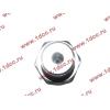 Датчик давления масла H3 HOWO (ХОВО) VG1540090035/1 фото 3 Орск